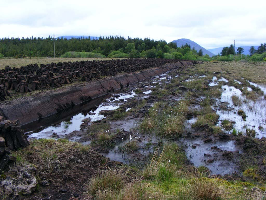 Photo 1 of bog, Oughterard