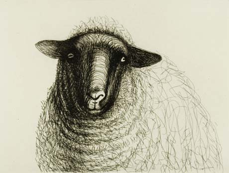 Sketch of a sheep from in front, by Henry Moore