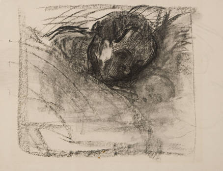 Drawing: Mother and Sleeping Child, by Kathe Kollwitz