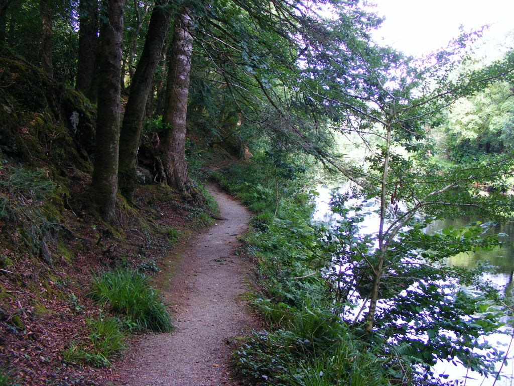 Riverside path at Ballinahinch