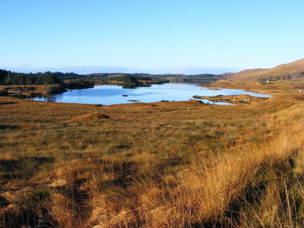 Photo of Connemara in November