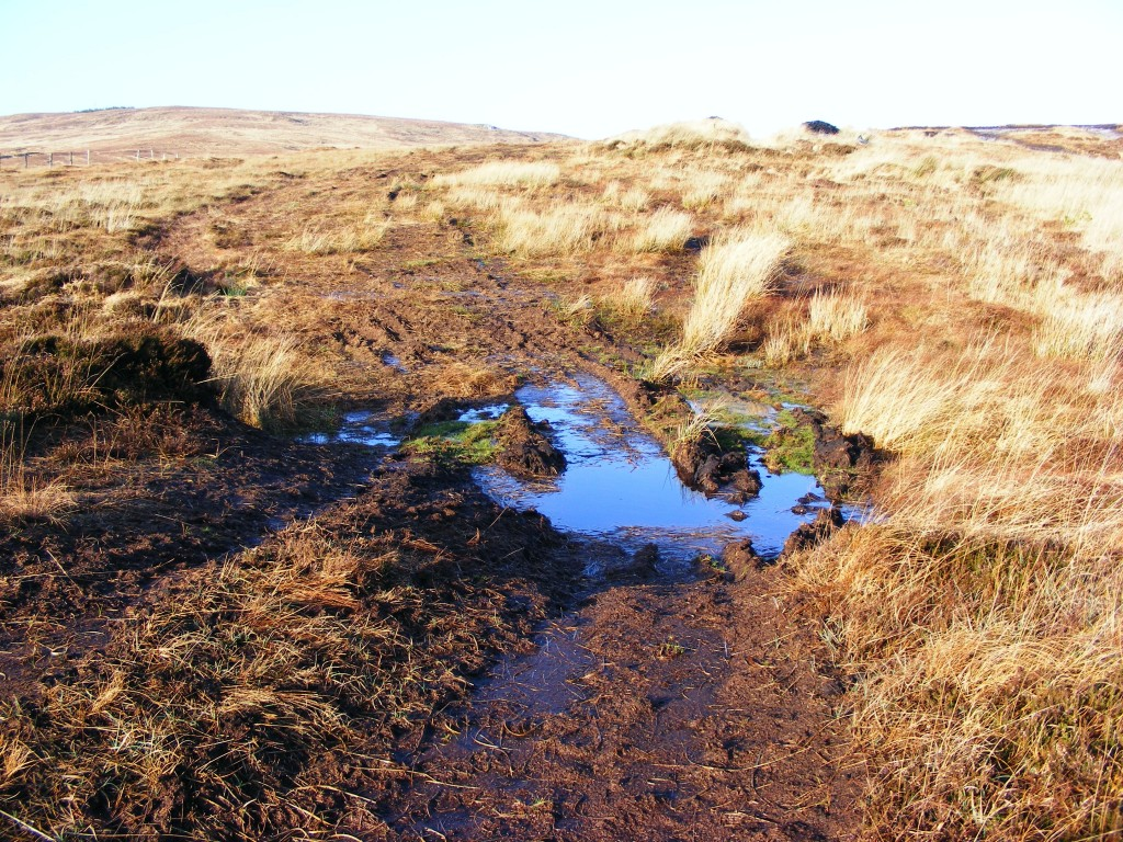 Blue Pool in the bog