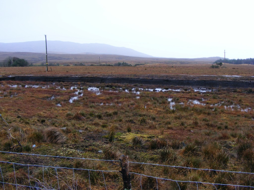Oughterard Bog from the N59