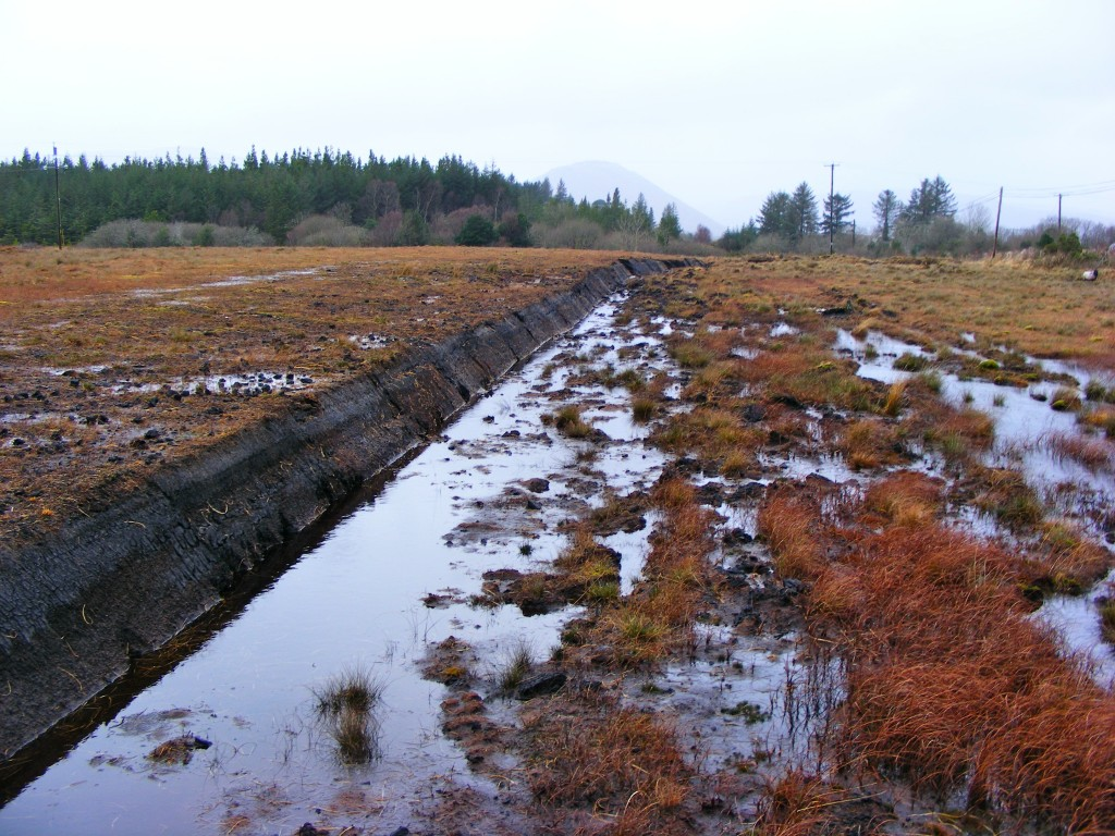 Oughterard Bog, second photo