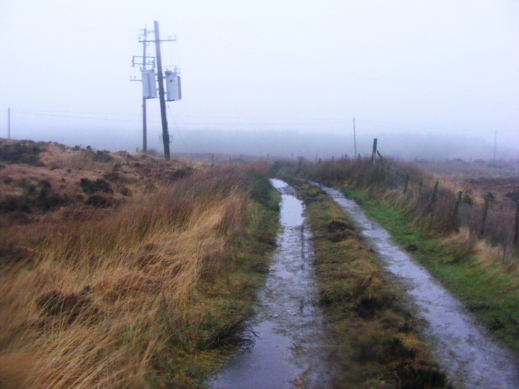 Rain on Bog Road