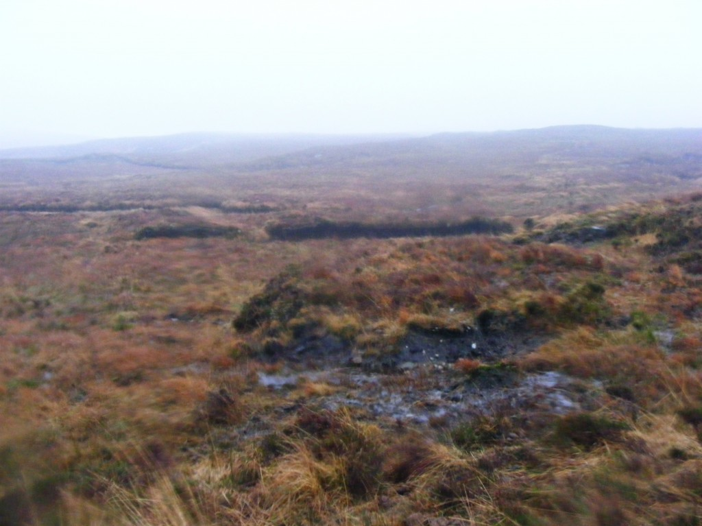 Wet Bog in the rain