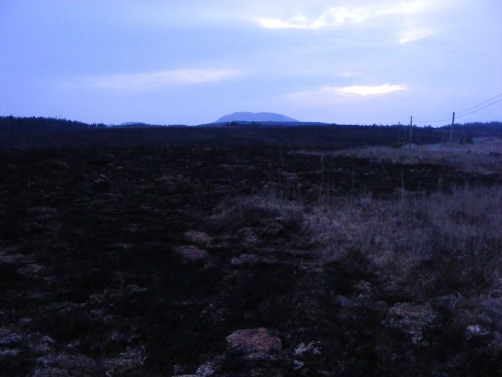 Charred landscape II