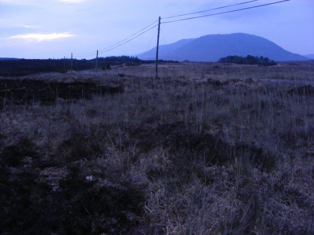 Charred landscape near Oughterard