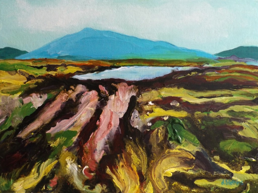 Oughterard Summer Bog, finished paintiing